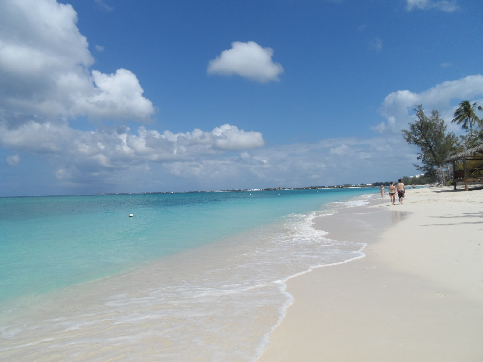 Governor S Beach Grand Cayman Snorkeling