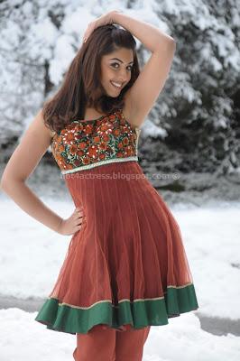 Richa gangopadhyay latest spicy photos