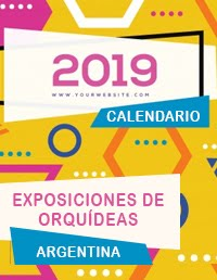 Calendario 2019 completo