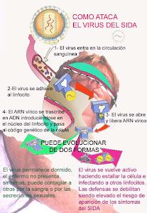 Como ataca el sida