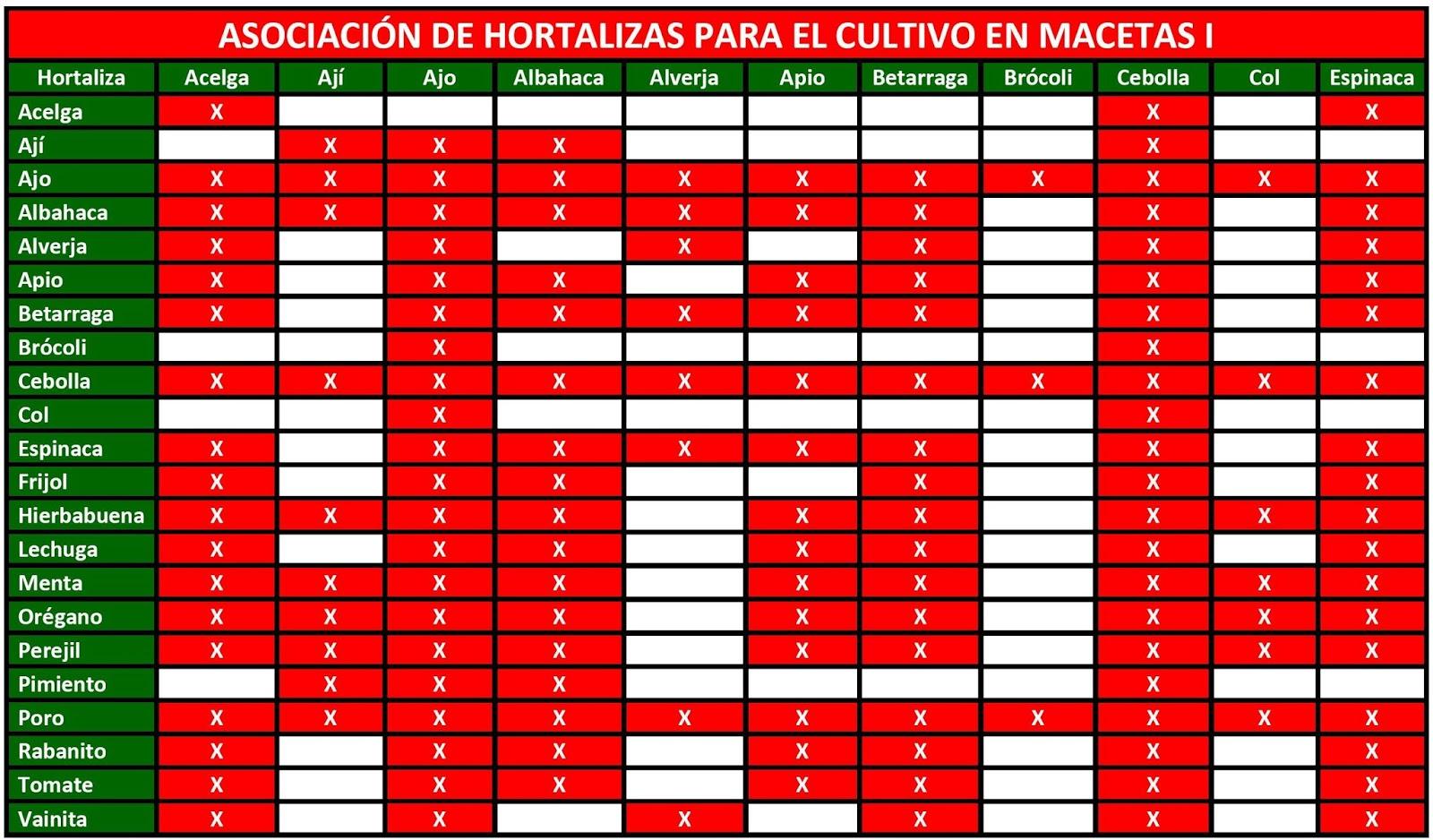 Huerto urbano c mo asociar los cultivos en macetas for Huerta de aromaticas en macetas