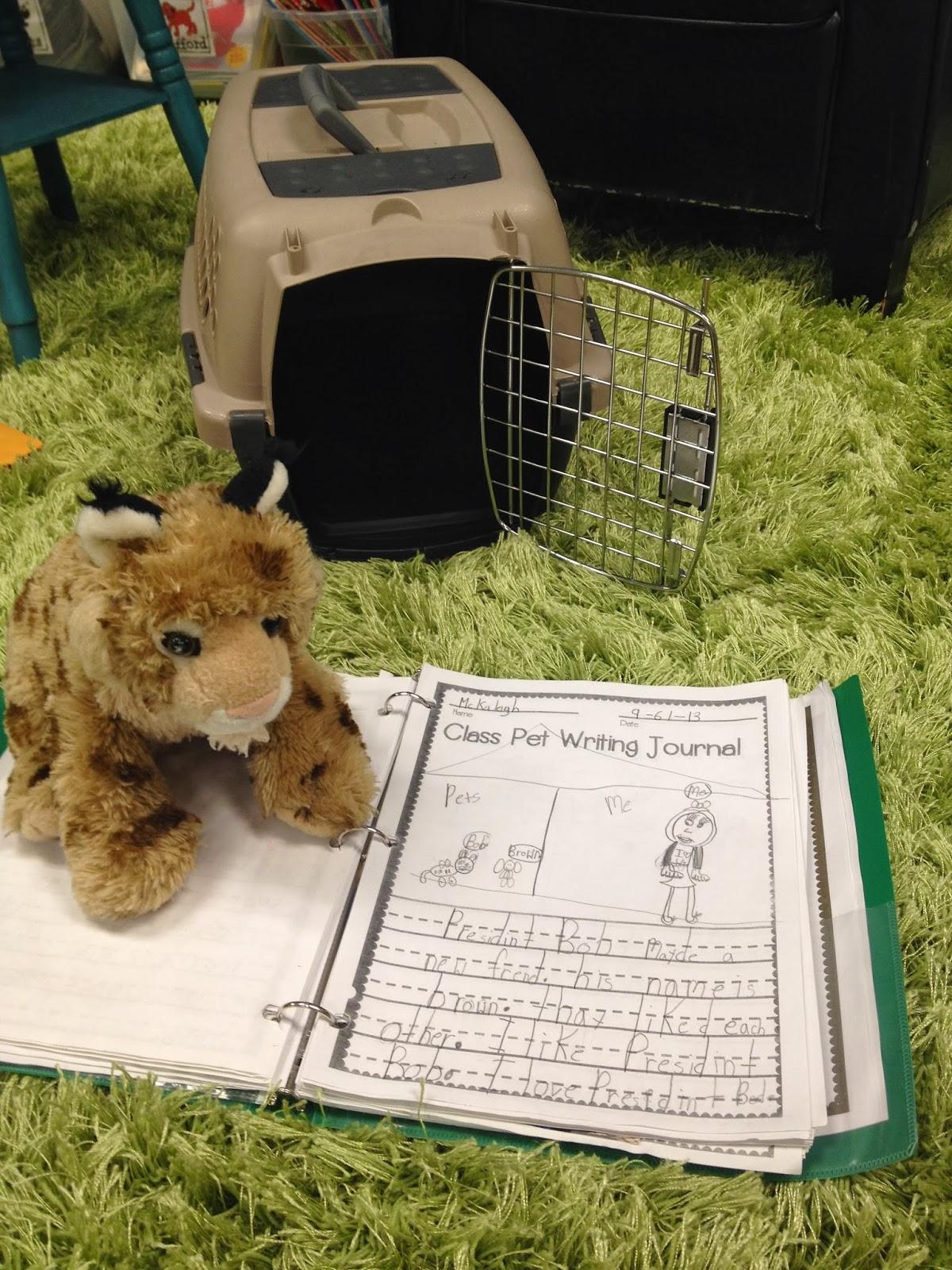 Classroom Pet Ideas ~ Happy new year tunstall s teaching tidbits