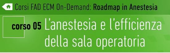 http://www.roadmapinanestesia.it/