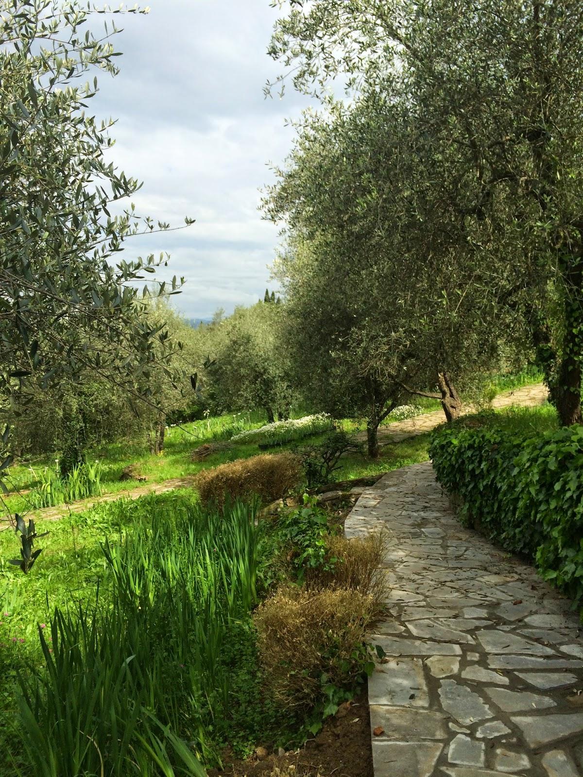 the wise saru : e' tempo di giardini... - Piccolo Giardino In Pendenza
