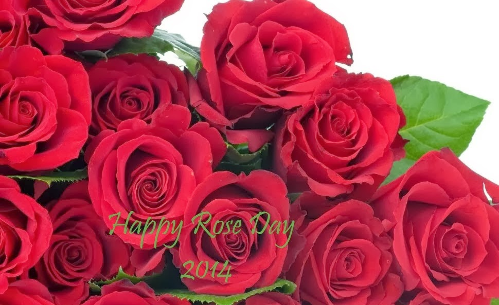 Rose Day 2014 Wallpapers
