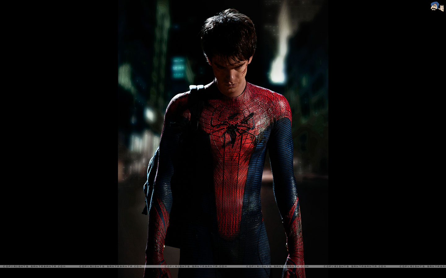 the amazing spider man wallpapers - Wallpapers Featuring Spider Man Marvel