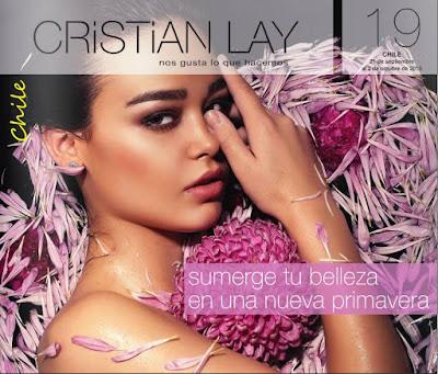 Cristian Lay Campaña 19 2015 Chile
