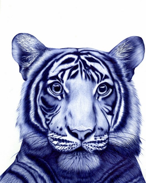 15-Tiger-Sarah-Esteje-ABADIDABOU-Hyper-realistic-Ballpoint-Pen-Animals-www-designstack-co