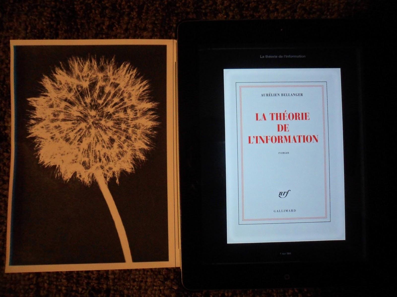 http://blowawaydandelion.blogspot.fr/