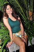 Shilpi sharma new photos-thumbnail-4