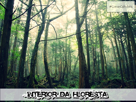 a floresta conhecida por suicidios
