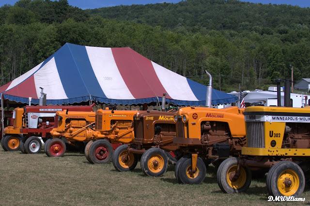Moline Tractors