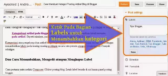 Cara Membuat Label Kategori Posting Artikel Blog