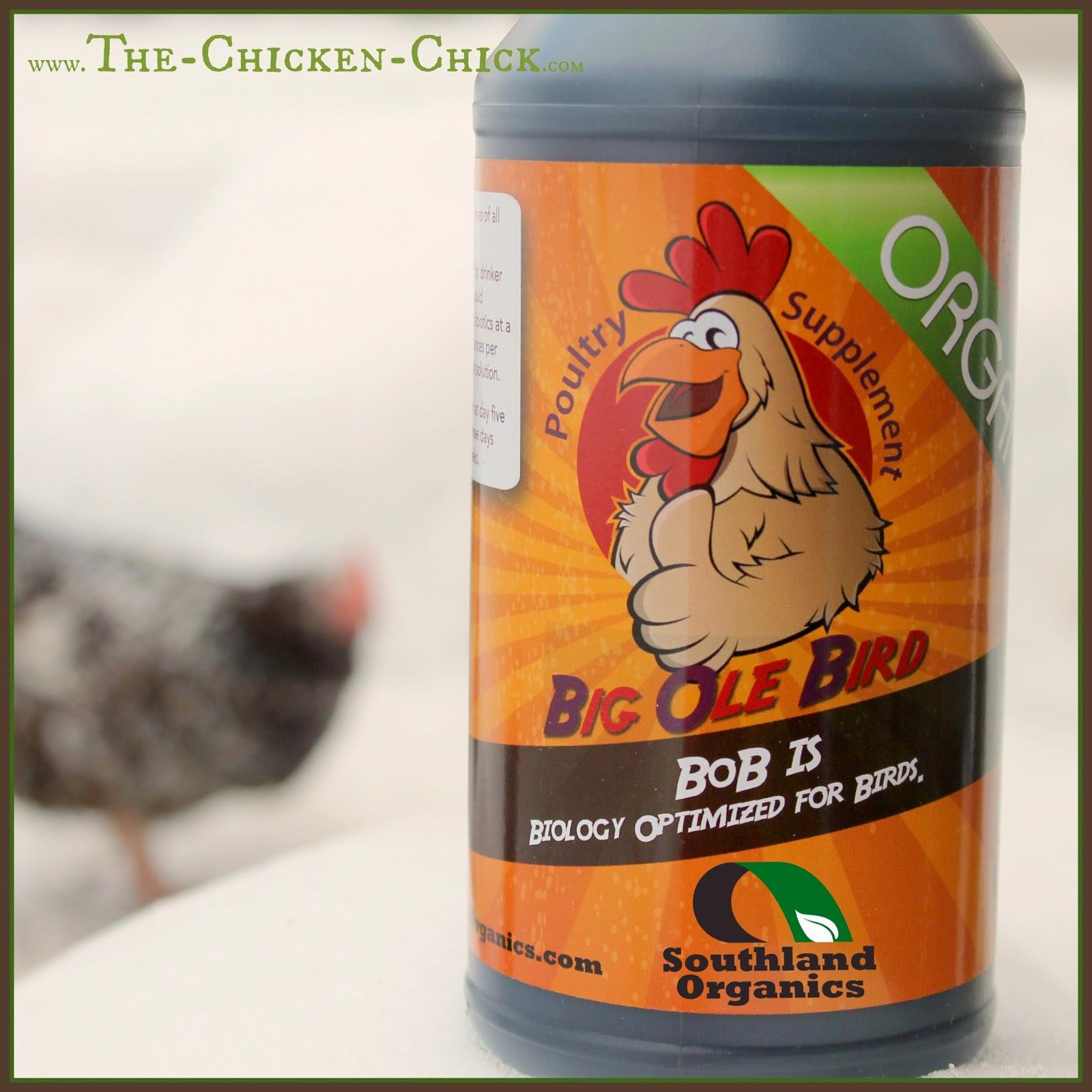 Big Ole Bird Probiotics