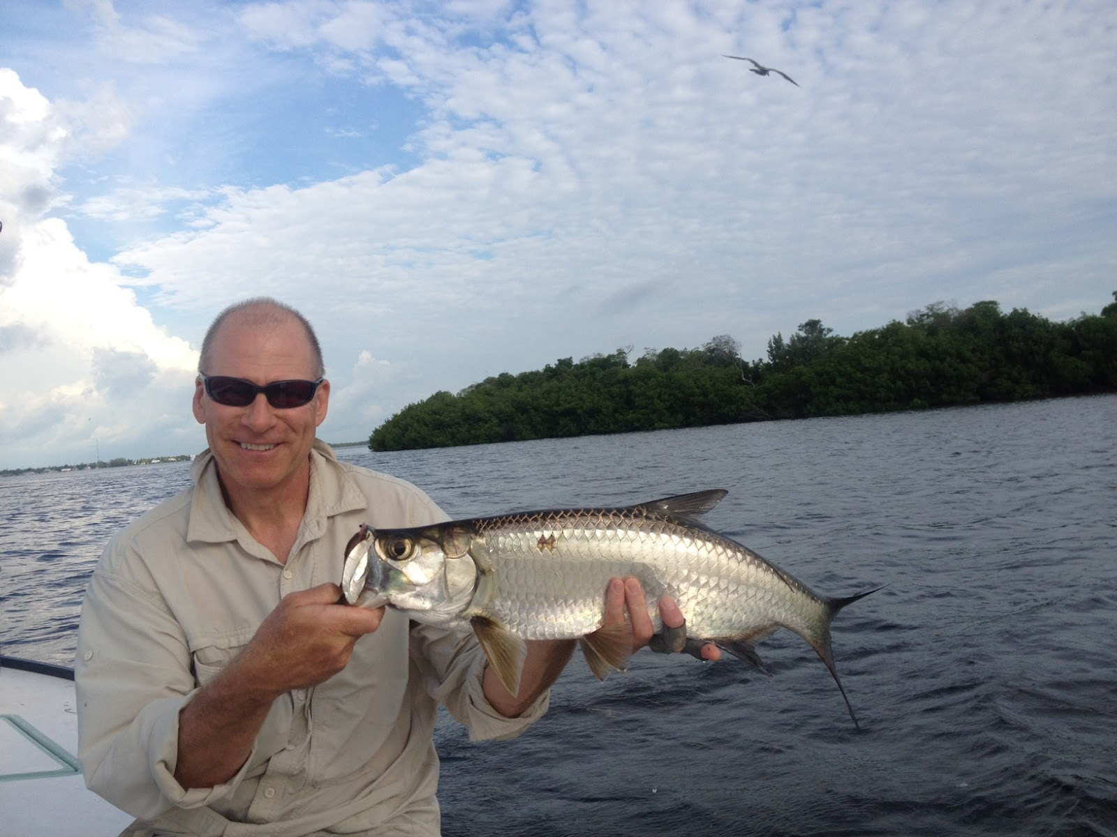 Sight fish charters florida keys flats fishing report for Best florida fish to eat