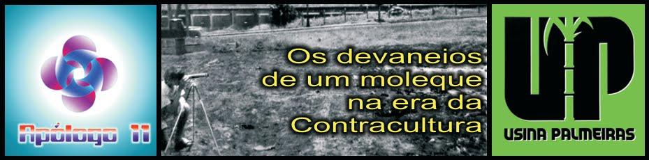 APOLOGO 11 - OS DEVANEIOS DE UM MOLEQUE NA ERA DA CONTRACULTURA