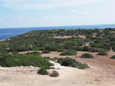 Nature reserve Cala Bona Mallorca