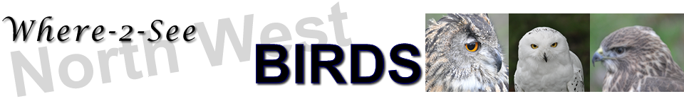Where-2-See Birds (Beta Version)
