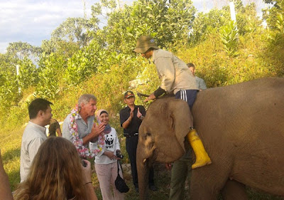 Harrison Ford make movie in Kalimantan, Indonesian forest