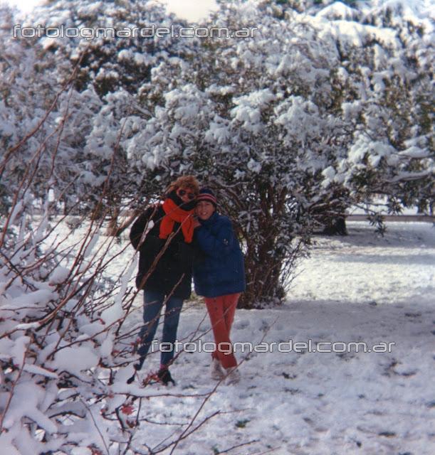 nieve en Mardel