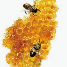 Sweet AS the Honeycomb