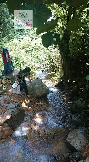 Đường lên thác Hòa Binh, huyện Tân Phú, Đồng Nai