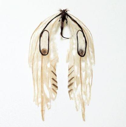 لوحات فنية لأوراق الشجر وبعض الأعمال الفنية من شعر  Hair-insects7