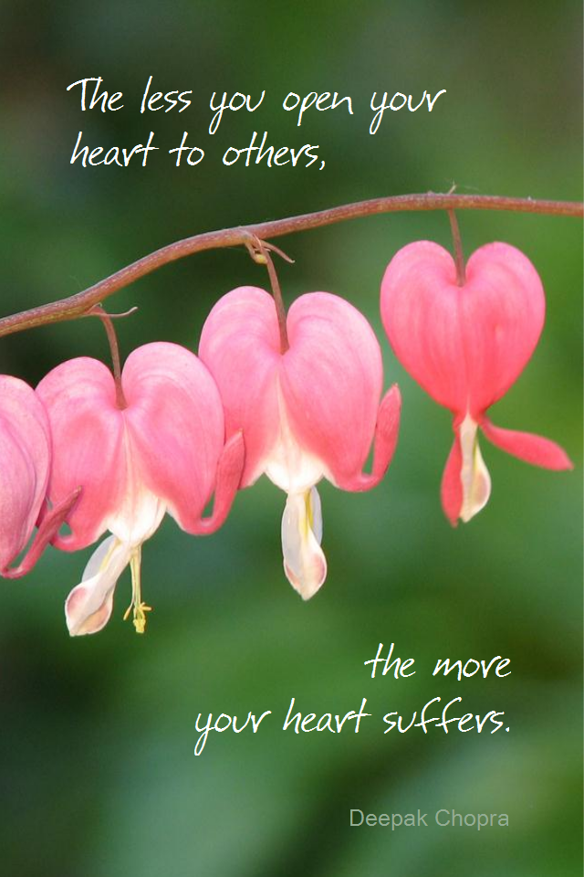 visual quote - image quotation for LOVE - The less you open you heart to others, the more your heart suffers. - Deepak Chopra