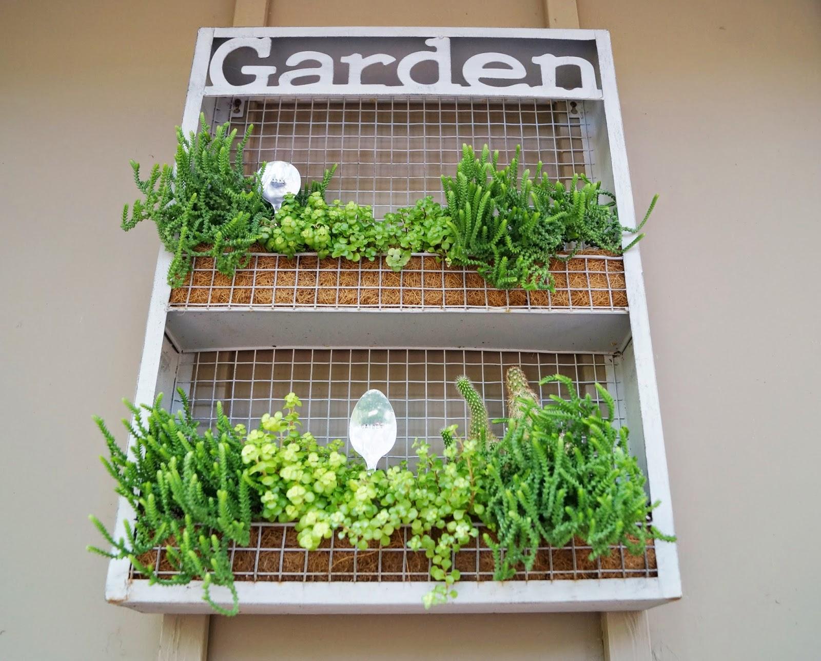 Don 39 T Disturb This Groove Vertical Succulent Garden