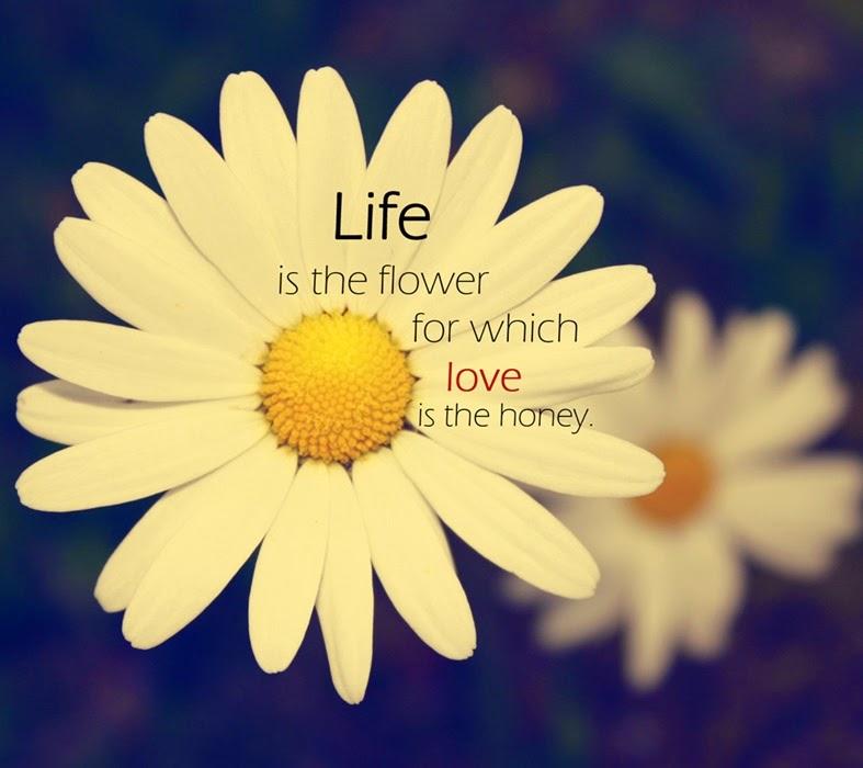 Flowers quotes many flowers flowers quotes mightylinksfo