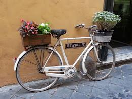 ......Rome