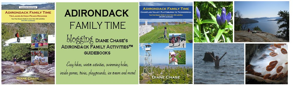 Adirondack Family Time™: Four-Seasons of Activities