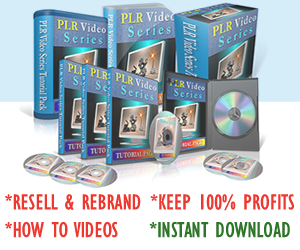PLR Video Series Tutorials Pack