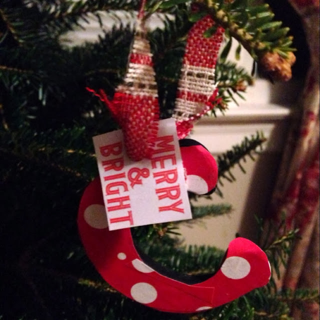 http://www.thecraftysideofsarcasm.com/posts/12-days-christmas-ornaments/