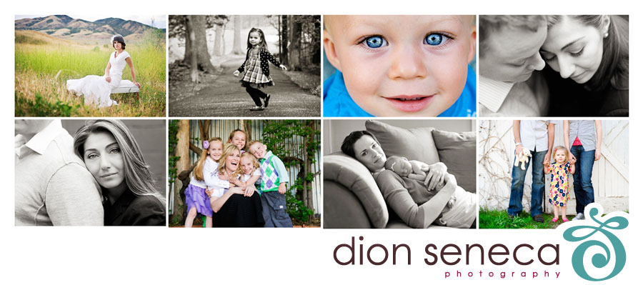 Dion Seneca Photography