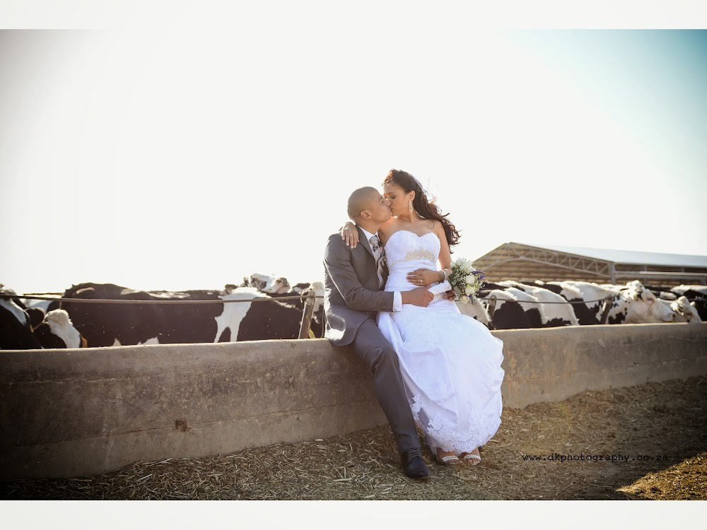 DK Photography Slideshow-388 Bianca & Ryan's Wedding in Eensgezind Function Venue  Cape Town Wedding photographer