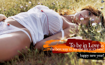 Hot n Sexy Happy New Year 2016 HD Wallpapers Backgrounds