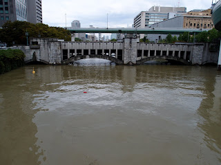 台風により堂島川や土佐堀川も黄色い濁流で増水しました!