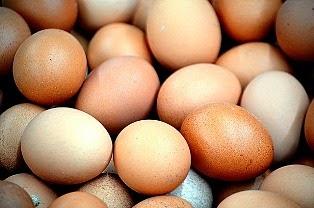 Manfaat Putih Telur untuk Kesehatan dan Kecantikan