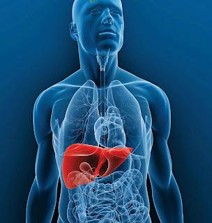 hígado,hemocromatosis,ferritina,hierro,got,gpt