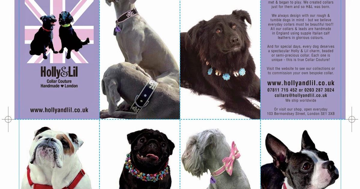 Yri Dog Collars