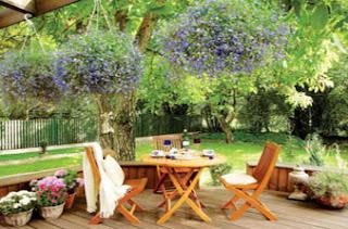 Outdoor Living Room Garden