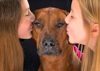 Chicas con su perro