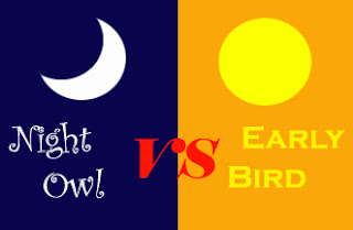 Night Owl Early Bird Writer