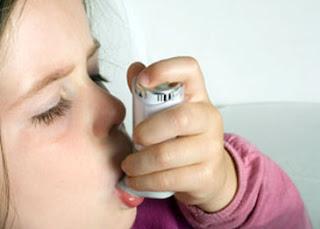 obat asma tradisional herbal