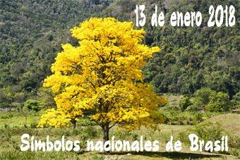 Símbolos naturales de Brasil