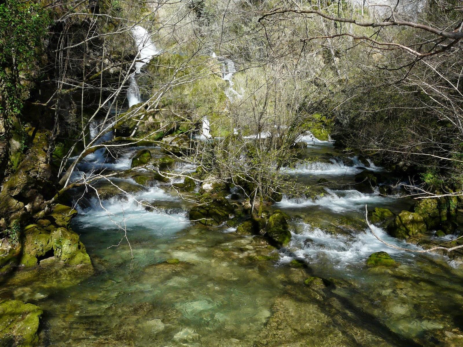 Nacedero del río Urederra