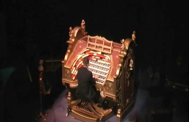 Sanfilippo organ