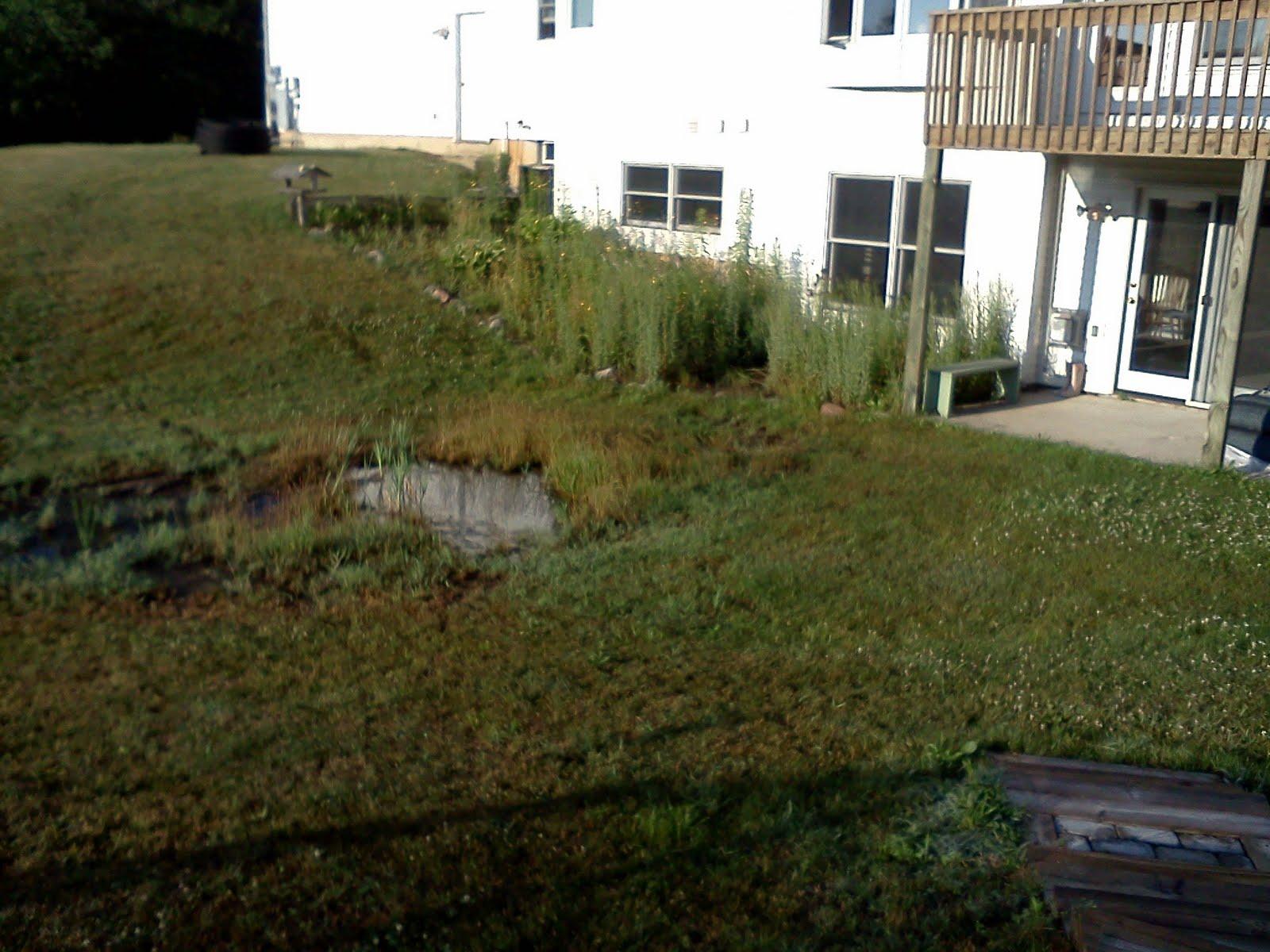 landscape labor solutions blog