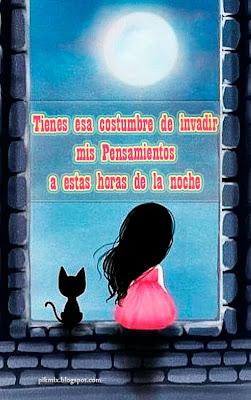 Reproche ~ Frases de amor  ~ chica y gato